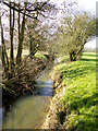 TQ8139 : Tributary of the Hammer Stream Lowland farm looking SW by Peter Skynner