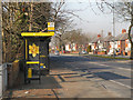 SJ4990 : Bus Stop on Warrington Road by David Dixon
