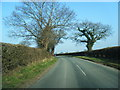 SJ5461 : Crib Lane looking north-east by Colin Pyle