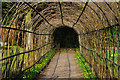 SP0583 : Hazel tunnel in the gardens at Winterbourne by Phil Champion