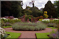 SP0583 : In the walled garden at Winterbourne by Phil Champion