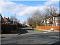 SJ9491 : Barnfield Avenue, Romiley by John Topping