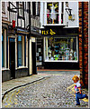 SJ6552 : Church Lane Nantwich by Gillie Rhodes