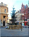 ST3188 : City centre Christmas tree, Newport by John Grayson