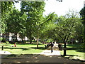 TQ2982 : Tavistock Square Gardens by Stephen Armstrong