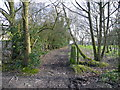 SJ9591 : Path leading to Springwood Farm from Heys Lane by John Topping