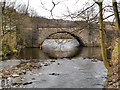 SD9703 : River Tame, Roaches Bridge by David Dixon