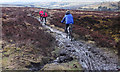 SK0290 : Bridleway at Knarrs Nook by michael ely