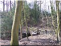 SJ9583 : Footbridge in Ryles Wood by Raymond Knapman