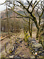 SE0203 : Wooded Path above Dove Stone Reservoir by David Dixon