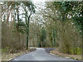 TL7827 : A lane through woodland by Robin Webster