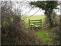 SJ1279 : Stile for footpath through Bryn Digrif land by Maggie Cox