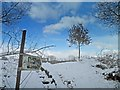 SE3403 : Snowy footpath near Worsbrough reservoir by Steve  Fareham