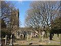 SJ8969 : Gawsworth Parish Church by Bryan Pready