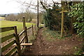 TQ1551 : Footpath/bridleway junction, Westhumble by Rob Noble