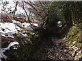 SJ9692 : Long Established Footpath by Stephen Burton