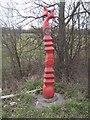 SK2627 : Millennium Milepost by John M