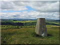 SK1773 : Trig point on Wardlow Hay Cop by Trevor Littlewood