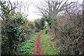SX9369 : South West Coast Path, Herring Cove by N Chadwick