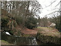 SJ8382 : The weir on the River Bollin at Quarry Bank Mill by Raymond Knapman