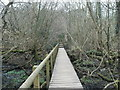 SJ8382 : Footbridge in Burned Hey Wood by Raymond Knapman