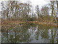 TL5226 : Pond in Aubrey Buxton Nature Reserve by Roger Jones