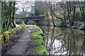 SJ9686 : Plucksbridge from the towpath by Peter Turner