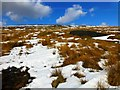 NY6145 : Spoil Heap On Renwick Fell by Douglas Law