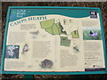 TM5194 : Camps Heath Information Board by Adrian Cable