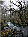 SK2579 : Burbage Brook by Stephen Burton