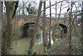TQ5746 : Railway bridge over the Shallows by N Chadwick