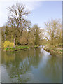 TL4355 : Pool below the Mill, Grantchester by David P Howard