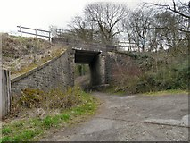 SJ9493 : Railway bridge near Apethorn Lane by Gerald England