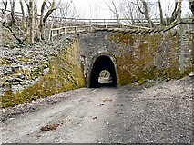 SJ9493 : Apethorn Tunnel by Gerald England