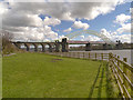 SJ5083 : The Widnes-Runcorn Bridges over The River Mersey by David Dixon