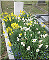 SE7872 : Spring flowers on a seaman's grave by Pauline Eccles