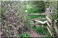 SP8524 : Footpath to Stewkley by Philip Jeffrey