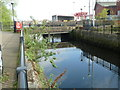 TQ2575 : River Wandle, Wandsworth by Mr Biz