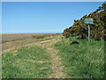 TF9744 : The Norfolk Coast Path at Stiffkey Greens by Evelyn Simak
