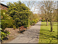 SD6008 : The Lower Walled Garden, Haigh Hall by David Dixon