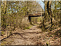 SD6007 : Haigh Country Park, Bridge over Disused Railway by David Dixon
