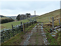 SN7678 : Gate on the track through Tymawr by John Lucas