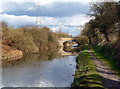 TQ0380 : Canal Bridge near Iver by Des Blenkinsopp