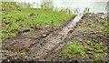 J1463 : Drainage improvements, Broadwater towpath, Moira/Aghalee (2013-1) by Albert Bridge