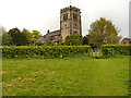 SJ8476 : St Mary's Church, Nether Alderley by David Dixon