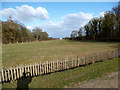 TF7729 : West View to Houghton Hall by Des Blenkinsopp