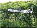 TM3787 : Great Common Lane sign by Adrian Cable