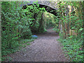 TQ8399 : Old Trackbed at Stow Maries Halt Nature Reserve by Roger Jones