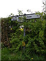 TM3588 : Roadsign on Lodge Road/Annis Hill by Adrian Cable