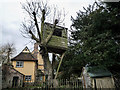 TL6147 : Tree House on West Wickham road by Kim Fyson